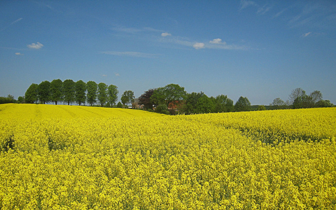 Skånetur på Valborg