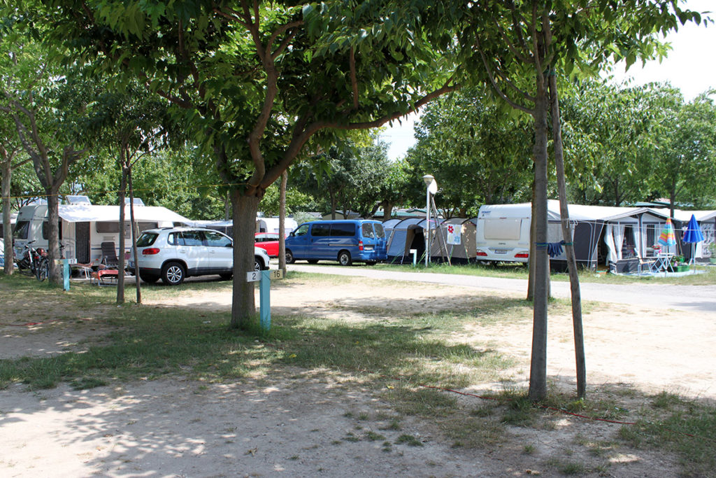Vår blåa minibuss